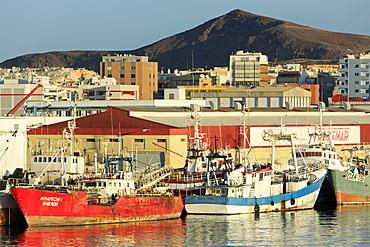 Fishing boats in Santa Catalina Port, Las Palmas City, Gran Canaria Island, Canary Islands, Spain, Atlantic, Europe