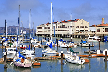 Fort Mason Center Marina, San Francisco, California, United States of America, North America