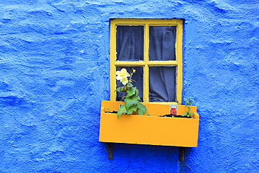 Cottage window, Kinsale Town, County Cork, Munster, Republic of Ireland, Europe