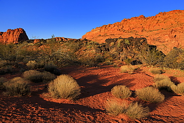 Snow Canyon State Park, St. George, Utah, United States of America, North America