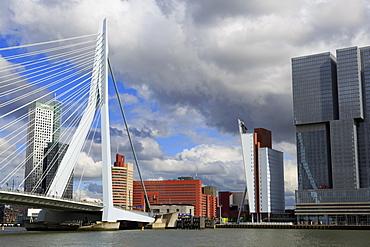 Erasmus Bridge, Rotterdam, South Holland, Netherlands, Europe