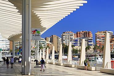 Paseo De La Pergola, Malaga, Andalusia, Spain, Europe