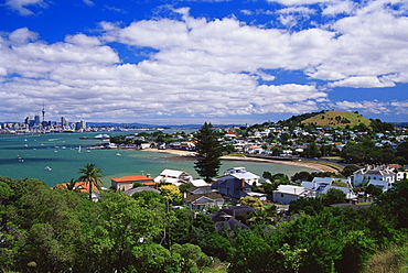View of Auckland city from North Head Reserve, North Island, New Zealand, Pacific