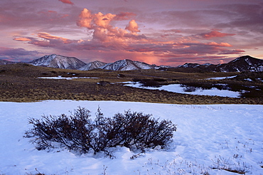 Independence Pass, Sawatch Range, Rocky Mountains, Aspen region, Colorado, United States of America, North America