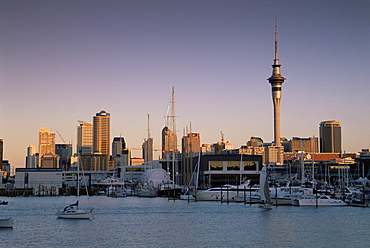 St. Mary's Bay, Auckland, North Island, New Zealand, Pacific