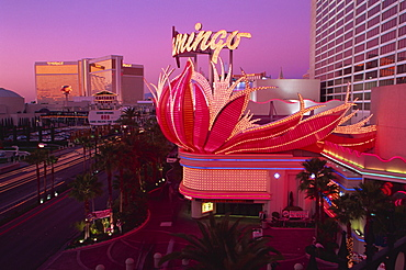 Flamingo and Mirage Hotels and Casinos, Las Vegas, Nevada, United States of America, North America