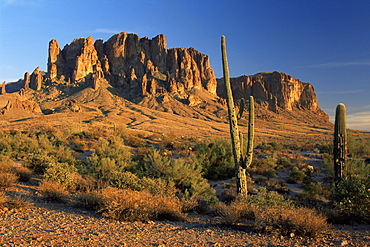 Lost Dutchman State Park, Phoenix, Arizona, United States of America, North America