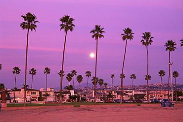 Beachfront homes, Balboa Island, Newport Beach, southern California, California, United States of America, North America