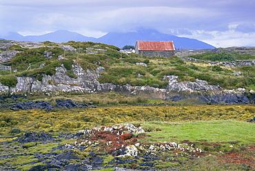 Cashel Bay, Connemara, County Galway, Republic of Ireland, Europe