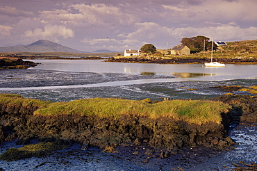 Inishnee Island, County Galway, Republic of Ireland, Europe