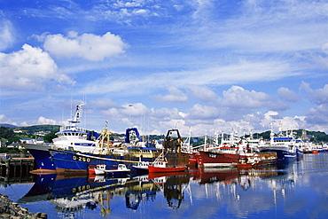 Fishing fleet, Killybegs Port, County Donegal, Ulster, Republic of Ireland, Europe