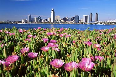City skyline from Coronado Island, San Diego, California, United States of America, North America
