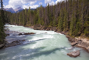 Kicking Horse River near Natural Bridge, Yoho National Park, UNESCO World Heritage Site, British Columbia, Rocky Mountains, Canada, North America