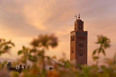The Minaret of the Koutoubia Mosque at dawn, UNESCO World Heritage Site, Marrakech, Morocco, North Africa, Africa