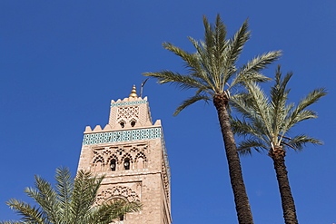 The Minaret of Koutoubia Mosque, with palm trees, UNESCO World Heritage Site, Marrakech, Morocco, North Africa, Africa