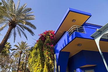 The garden of the Villa Majorelle, Marrakech, Morocco, North Africa, Africa