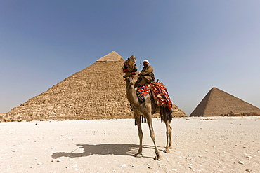 Man in traditional dress on a camel in front of the Pyramid of Khafre in Giza, UNESCO World Heritage Site, near Cairo, Egypt, North Africa, Africa