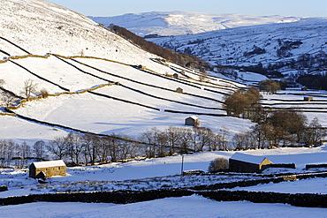 Stone barns in a winter landscape, Swaledale, Yorkshire Dales National Park, North Yorkshire, England, United Kingdom, Europe