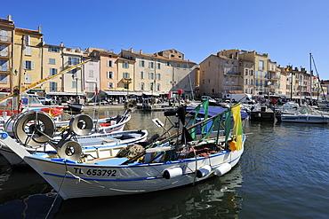 Fishing boats in Vieux Port harbour, St. Tropez, Var, Provence, Cote d'Azur, France, Mediterranean, Europe