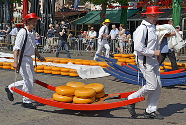 Cheese porters carrying cheese wheels on wooden sledges at the Friday Cheese Market, Waagplein Square, Alkmaar, North Holland, Netherlands, Europe