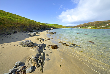 Sandy cove near Crookhaven, Wild Atlantic Way, Mizen Peninsula, County Cork, Munster, Republic of Ireland, Europe