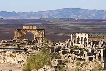 Triumph Arch in Roman ruins, Volubilis, UNESCO World Heritage Site, Morocco, North Africa, Africa