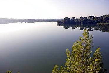 Alimini Grande lake, Otranto, Lecce province, Puglia, Italy, Europe