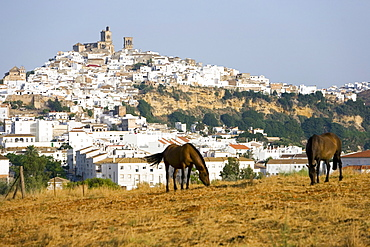 Arcos de la Frontera, one of the white villages, Andalucia, Spain, Europe