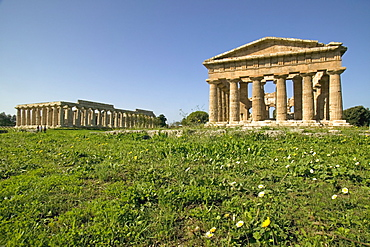 Temple of Hera (Basilica) left, temple of Poseidon (Neptune) right, Paestum, UNESCO World Heritage Site, Campania, Italy, Europe