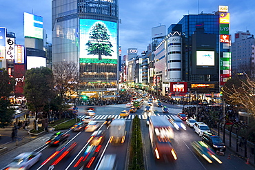 The famous Shibuya Crossing intersection at the centre of Shibuya's fashionable shopping and entertainment district, Shibuya, Tokyo, Japan, Asia