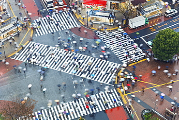 Aerial view of crowds crossing the famous Shibuya Crossing crosswalks at the centre of Shibuya's fashionable shopping and entertainment district, Shibuya, Tokyo, Japan, Asia