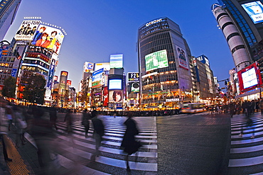 Shibuya Crossing, crowds of people crossing the intersection in the centre of Shibuya, Tokyo, Honshu, Japan, Asia