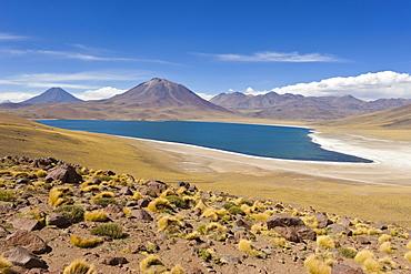 Laguna Miscanti at an altitude of 4300m and the peak of Cerro Miscanti at 5622m, Los Flamencos National Reserve, Atacama Desert, Antofagasta Region, Norte Grande, Chile, South America