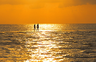 Silhouette of couple walking on a sandbank at sunset, Maldives, Indian Ocean, Asia
