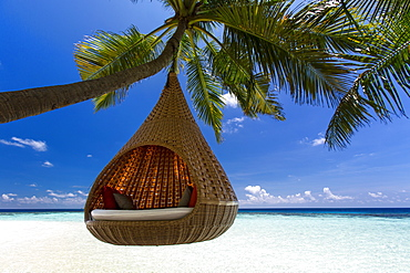 Sofa hanging on a tree on the beach, Maldives, Indian Ocean, Asia