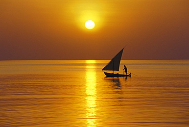 Traditional dhoni sailing at sunset, Maldives, Indian Ocean, Asia