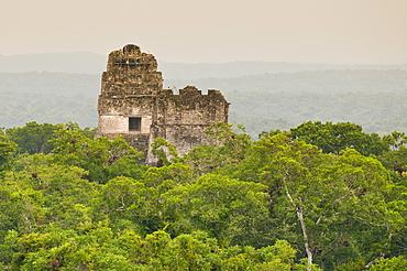Tikal National Park (Parque Nacional Tikal), UNESCO World Heritage Site, Guatemala, Central America
