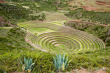 Moray Incan agricultural laboratory ruins near Maras, Sacred Valley, Peru, South America
