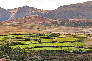 Landscape above the Sacred Valley near Maras, Peru, South America