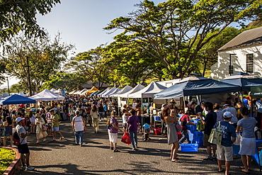 Saturday farmer's market, Honolulu, Oahu, Hawaii, United States of America, North America