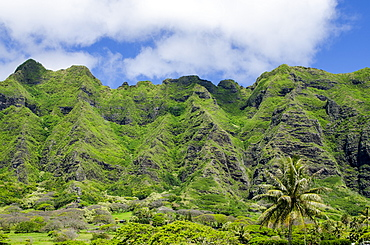 Hau'ula Forest Reserve, Koolau Mountain Rage, Oahu, Hawaii, United States of America, Pacific
