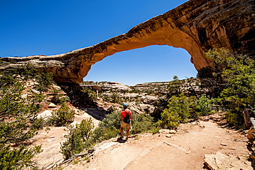 Owachomo Bridge, Natural Bridges National Monument, Utah, United States of America, North America