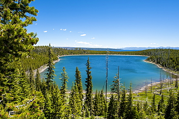 Duck Lake in Yellowstone National Park, UNESCO World Heritage Site, Wyoming, United States of America, North America