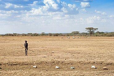 Uganda, Karamoja, Small boy shepherding his goats on the arid plains.
