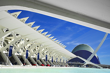 Spain, Valencia Province, Valencia, Spain, Valencia Province, Valencia, La Ciudad de las Artes y las Ciencias, City of Arts and Sciences, Principe Felipe Science Museum, El Pont de l'Assut de l'Or Bridge and Agora.