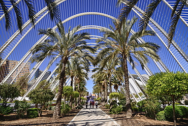 Spain, Valencia Province, Valencia, Spain, Valencia Province, Valencia, La Ciudad de las Artes y las Ciencias, City of Arts and Sciences, Interior of the Umbracle sculpture garden.