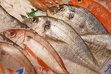 Spain, Madrid, Display of fish on a stall in Mercado San Anton.