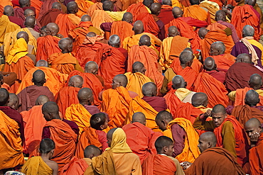 India, Bihar, Bodhgaya, Rear view of al arge group of seated pilgrims, dressed in saffron and orange robes, in the grounds of the Mahabodhi Temple.