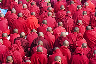 India, Bihar, Bodhgaya, Rear view of large group of seated Buddhist monks in the grounds of the Mahabodhi Temple.