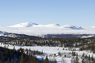 Norway, Central Region, Buskerud County, View of Vindhaugen peak with frozen lake and forested areas in foreground.